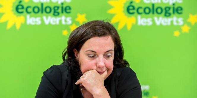 Europe Ecologie-Les Verts peut-elle exploser ?