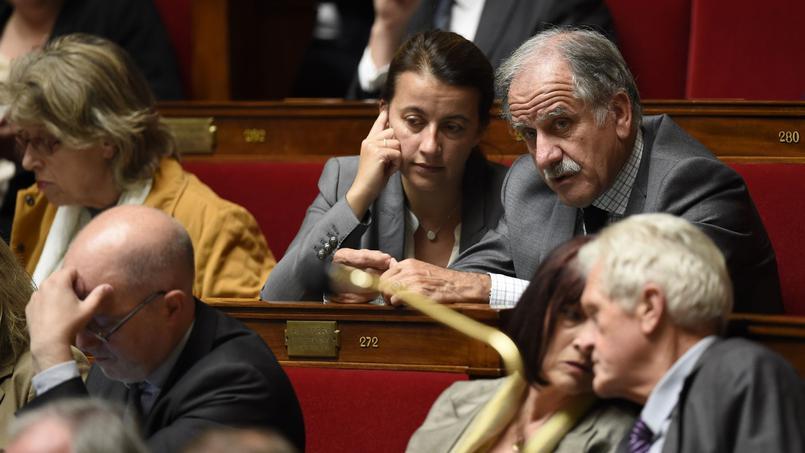 Le groupe écologiste à l'Assemblée disparaît